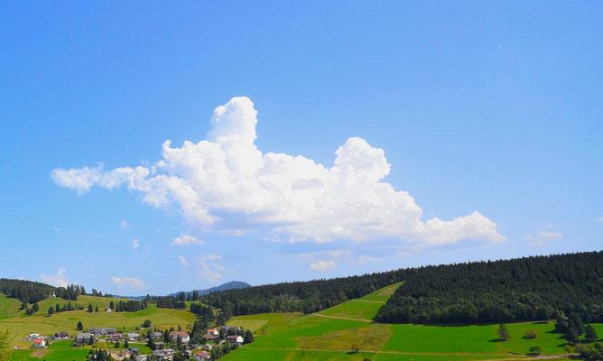 Schönwetterwolken im Sommer