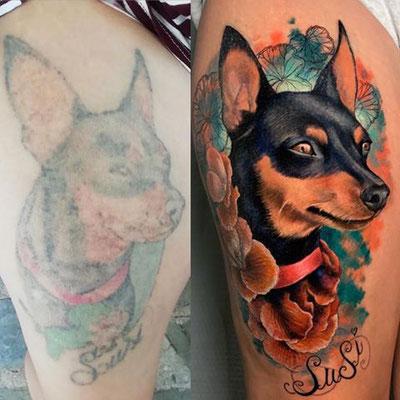 cover retrato perro