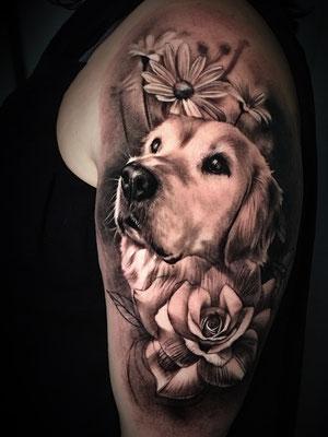perro blanco y negro