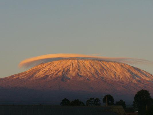 Kilimanjaro im Sonnenaufgang