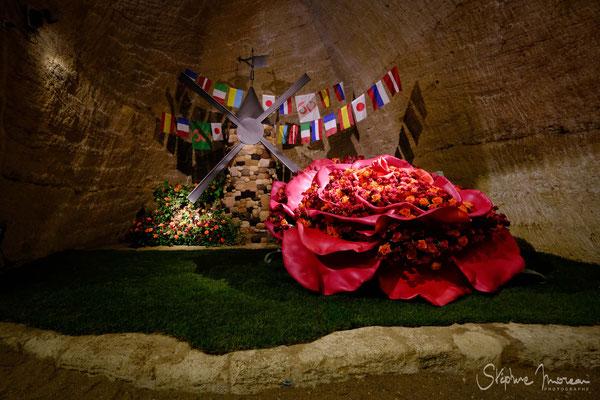 Les journées de la rose - Stephane Moreau Photographe