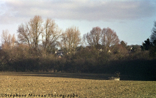 Chalonnes sur Loire - Stéphane Moreau - CANON FT QL - Fujifilm Supéria 100 (expirée)