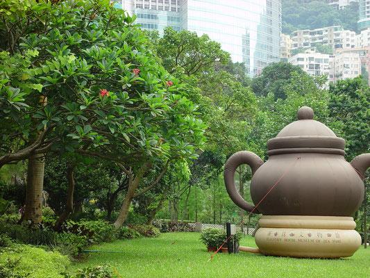 再び、香港植物園に戻り、茶具文物館へ。