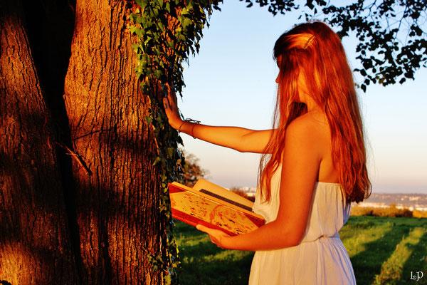 """1er prix pour un concours sur le thème """"L'arbre et l'histoire"""""""
