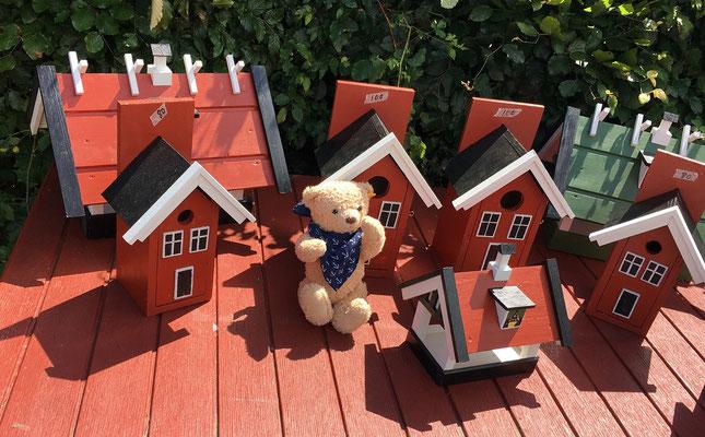 Hannes sucht ein Haus