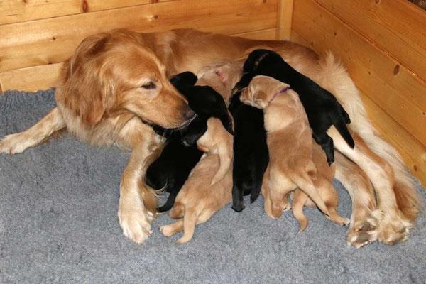 Mama, da ist kein Platz mehr für mich...