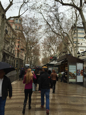 A snapshot of the promenade Las Ramblas de Catalunya