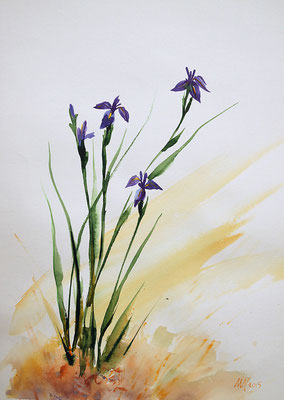 *** Watercolor, 30x40cm. 2015