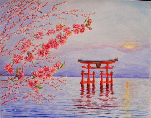 Sakura, watercolor, 40x50cm, 05-2009.