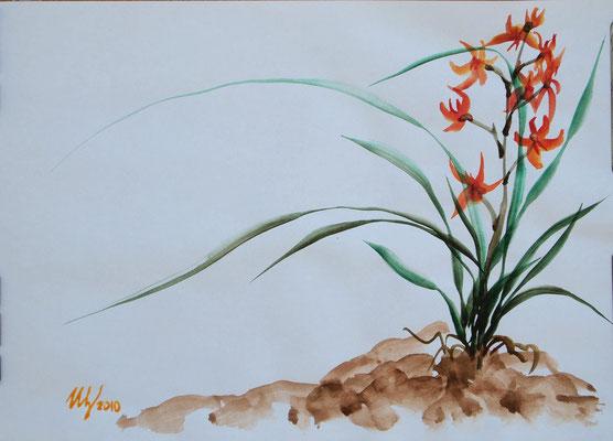 Orchid 2,stylization sumi-e, watercolor, A4, 07-2010.