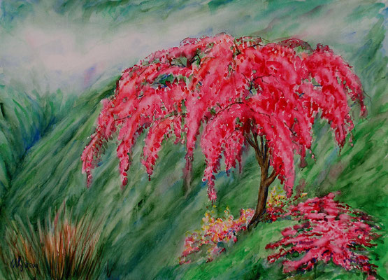 Sakura in the mountains. Watercolor. 30[40cm. 06-2010.Sold!