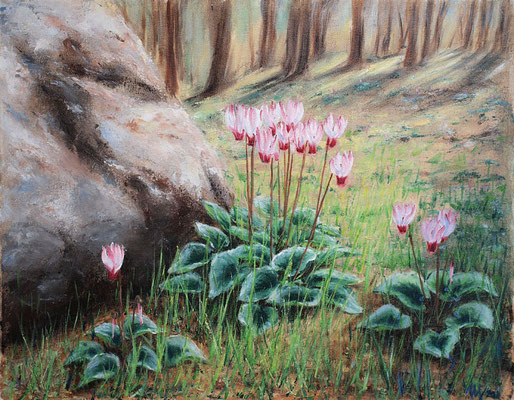 Forest Cyclamen. Oil on canvas, 40x50 cm, 03-2011,