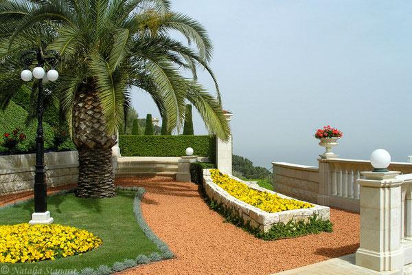 Bahai Temple Garden. Haifa.2. 04-2009