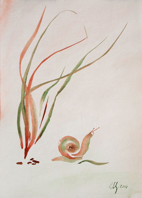 Snail. Watercolor. A4. 07-2010.