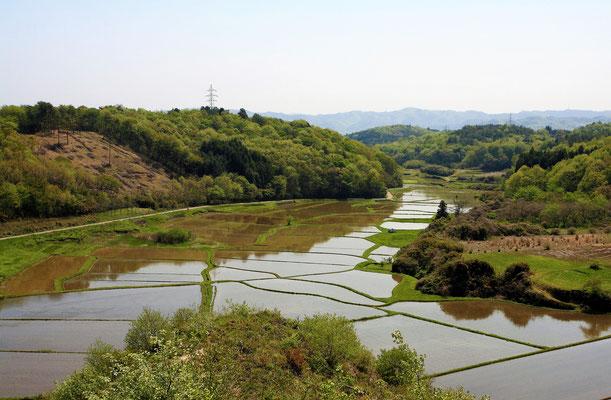 里山と谷津田