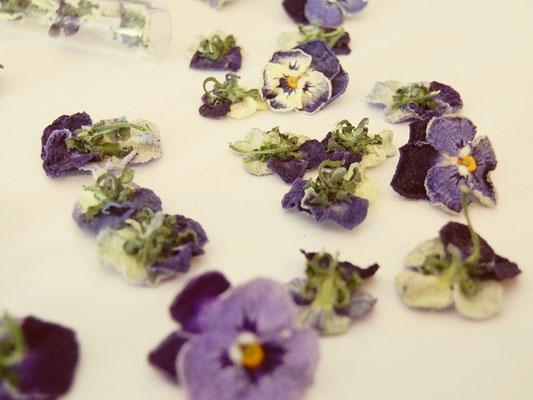 blog over viooltjes fantasy sieraden, folklore en napoleon bonaparte