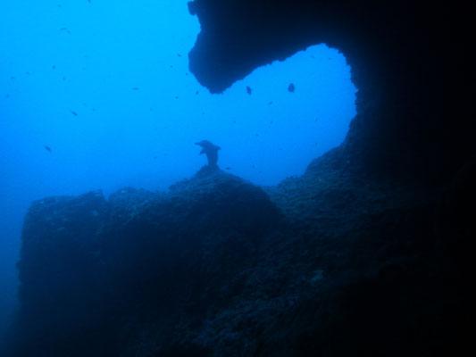 """L'ingrsso della grotta a """"Defi nord"""""""