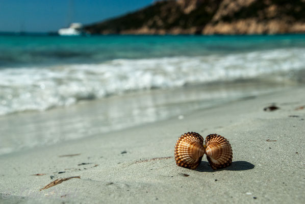 Plage de Roccapina, Korsika