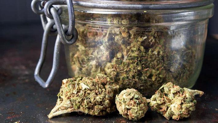 cannabis im einmachglas