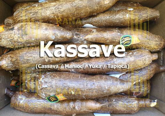 Kassava (Cassave / Manioc / Yuka / Tapioca)