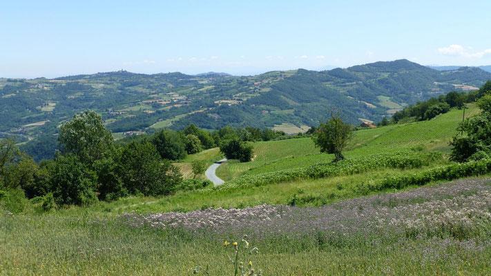 In den Hügeln des Monferratto