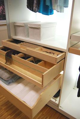 Innenausstattung eines Schrankes mit Schubladen und extra Schmuckfach