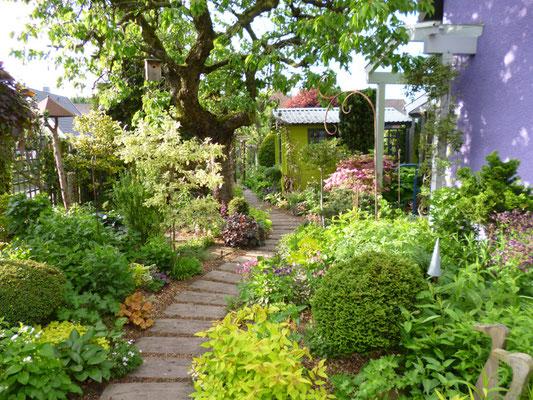 Der Garten Im Februar der garten garten eichlers webseite