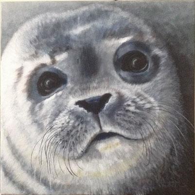 Zeehond, Acryl op linnen, 50 x 50 cm., 275,00 euro
