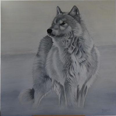 Poolwolf, Acryl op linnen, 90 x 90 cm., 975,00 euro
