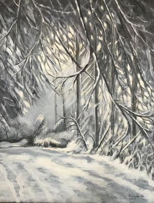 Winter op de Utrechtse Heuvelrug, acryl op linnen, 70 x 90 cm., 400,00 euro