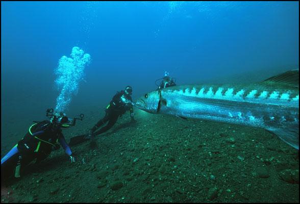 Unterwasser 05