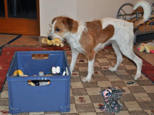 Spielzeug aufräumen