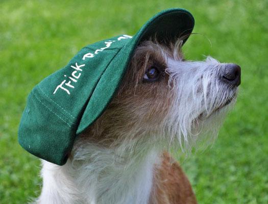Trickdog Brit