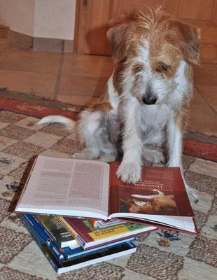 Puh, immer diese Hausaufgaben !