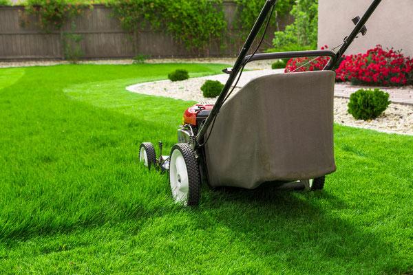 ménage, repassage, jardinage Gard