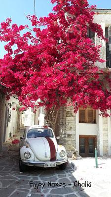to good to be true - Chalki Naxos