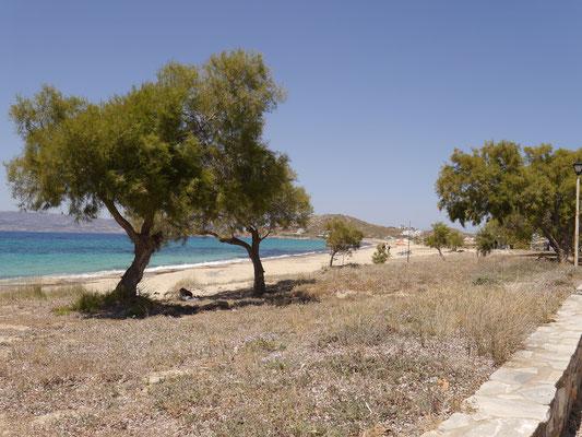 The beach of Agia Anna - Naxos eiland Griekenland