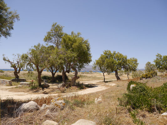 This is also on the beach - Take a look - Agia Anna Naxos