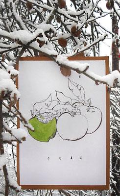 Яблоко на снегу, художник Лидия Жукова
