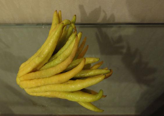 Цвет лимонов