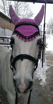 Princess Pony