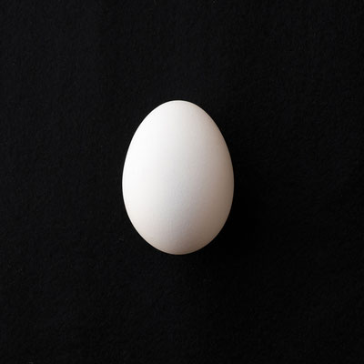 黒バックの白卵