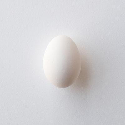 白バックの白卵