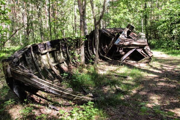 Schiffswrack im Wald