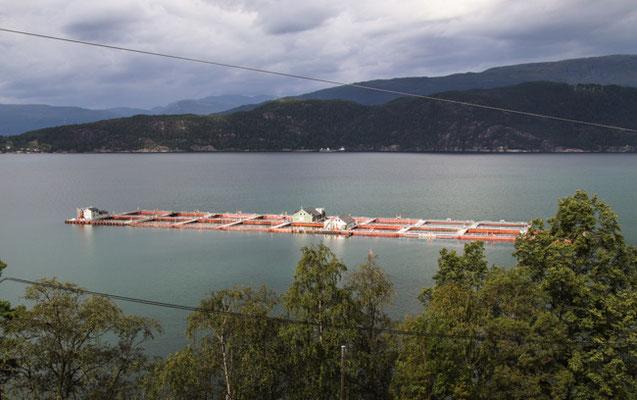 Fischfabrik bei Jondal