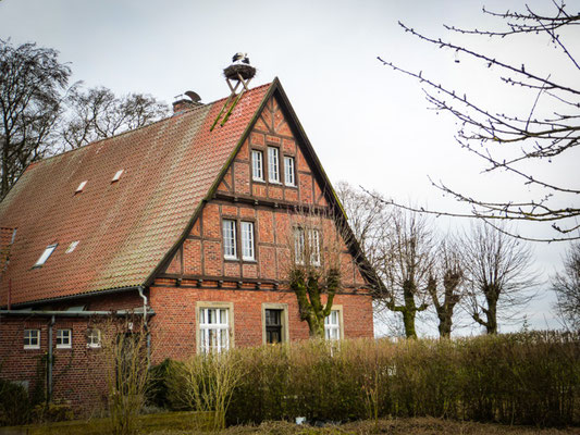 Rieselfelder bei Münster
