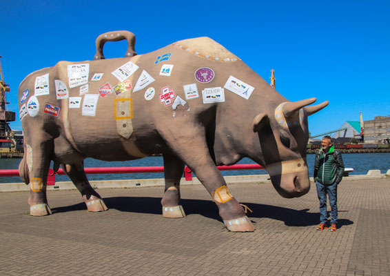 Ventspils, die Stadt der Kühe