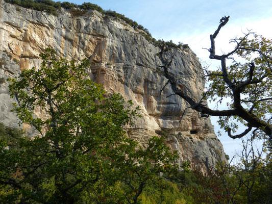 Kletterfelden bei Buoux