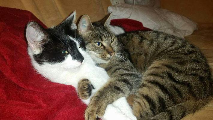Stupsi & Sally