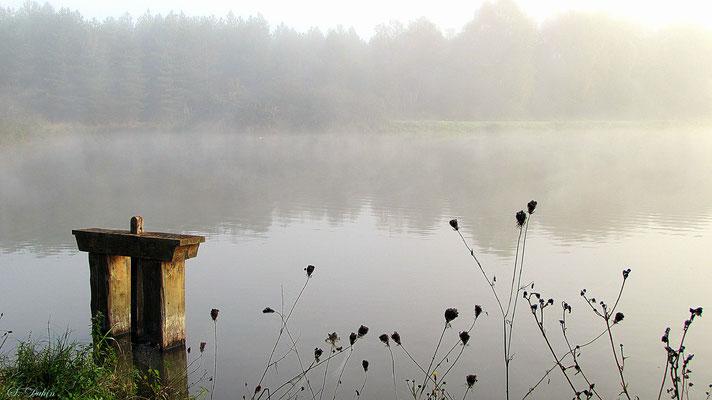 Maison des étangs